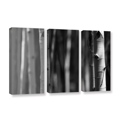 Brushstone A Way Out 3-pc. Gallery Wrapped CanvasWall Art
