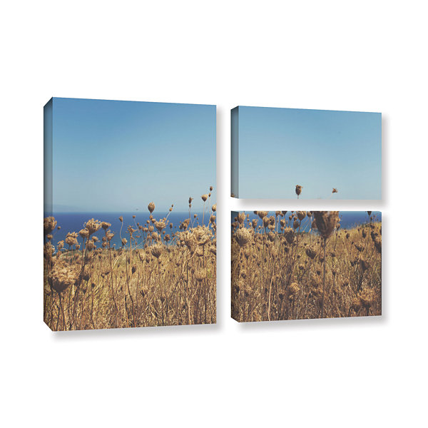 Brushstone Close Up Field 3-pc. Flag Gallery Wrapped Canvas Wall Art