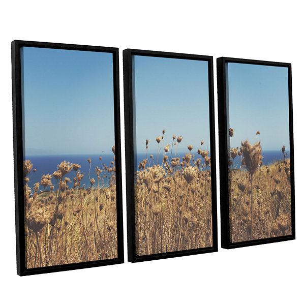 Brushstone Close Up Field 3-pc. Floater Framed Canvas Wall Art
