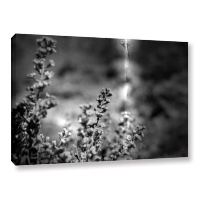 Brushstone Conditions Gallery Wrapped Canvas WallArt