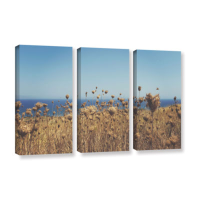 Brushstone Close Up Field 3-pc. Gallery Wrapped Canvas Wall Art