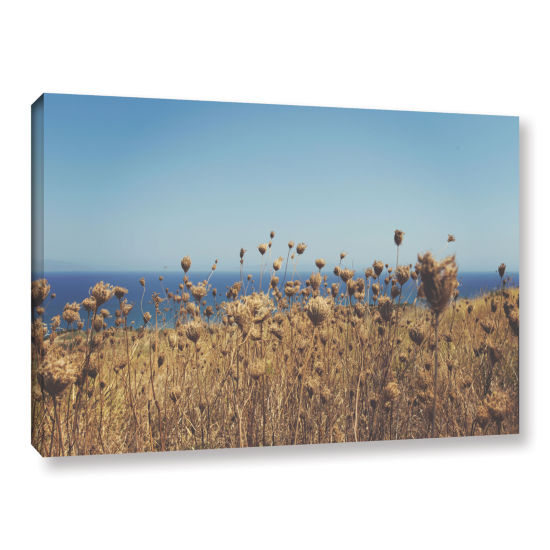 Brushstone Close Up Field Gallery Wrapped Canvas Wall Art