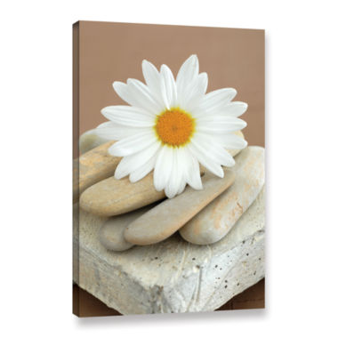Brushstone Contemporary Design Daisy And Stones Gallery Wrapped Canvas Wall Art
