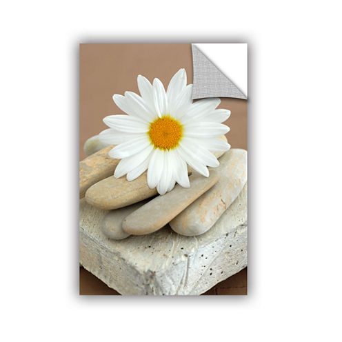 Brushstone Contemporary Design Daisy And Stones Removable Wall Decal