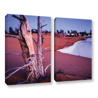 Brushstone Coal Dunes Dusk 2-pc. Gallery Wrapped Canvas Wall Art