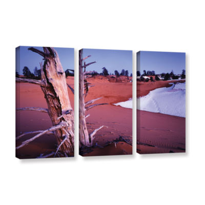 Brushstone Coal Dunes Dusk 3-pc. Gallery Wrapped Canvas Wall Art
