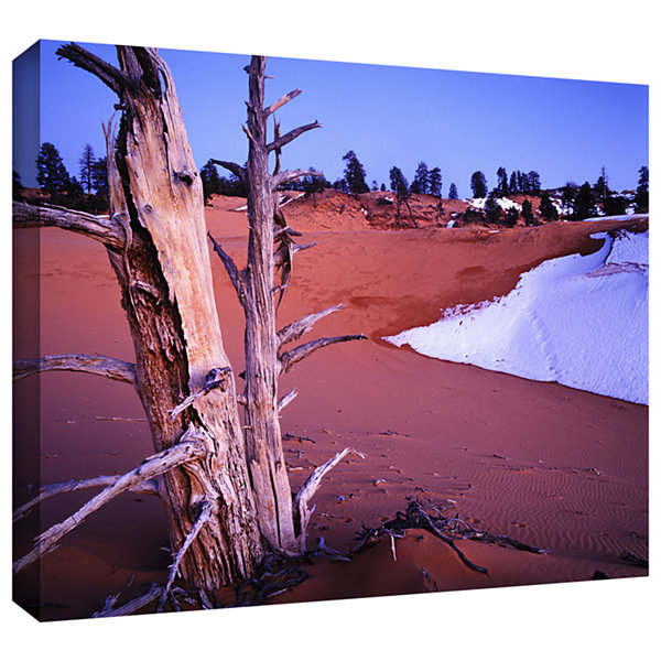 Brushstone Coal Dunes Dusk Gallery Wrapped CanvasWall Art