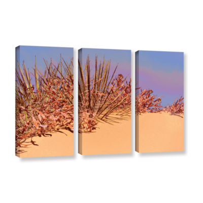 Brushstone Coral Dunes Noon 3-pc. Gallery WrappedCanvas Wall Art