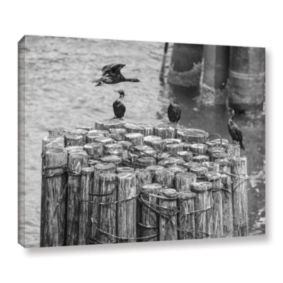 Brushstone Cormorant Landing Black And White Gallery Wrapped Canvas Wall Art