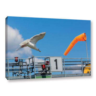 Brushstone Cleared For Landing Gallery Wrapped Canvas Wall Art
