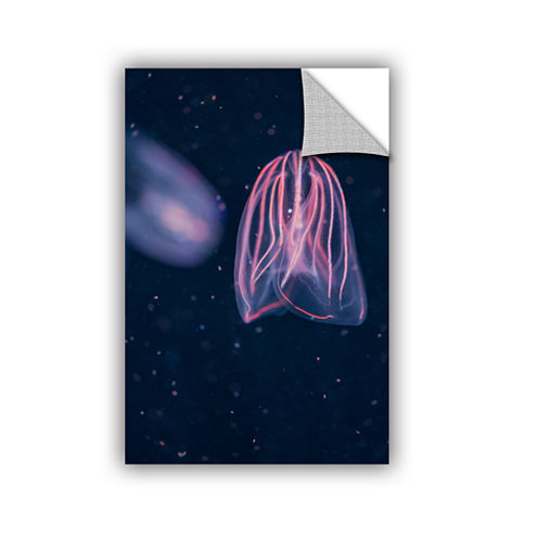 Brushstone Comb Jellies Removable Wall Decal