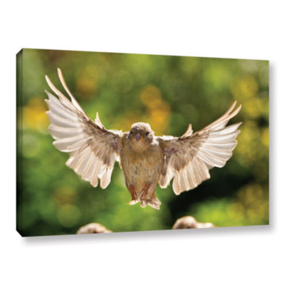 Brushstone 0043AA Gallery Wrapped Canvas Wall Art