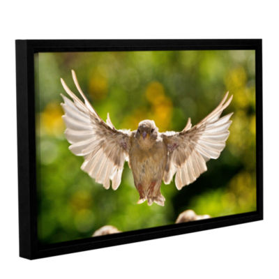 0043Aa Gallery Wrapped Floater-Framed Canvas Wall Art