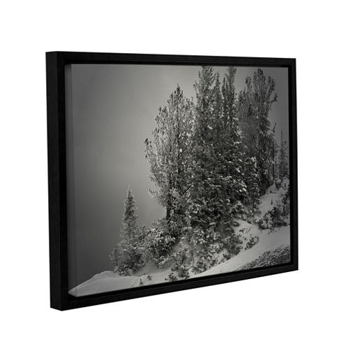 10,000 Feet of Silence Gallery Wrapped Floater-Framed Canvas Wall Art