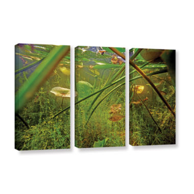Brushstone Butler Lake #5 3-pc. Gallery Wrapped Canvas Wall Art
