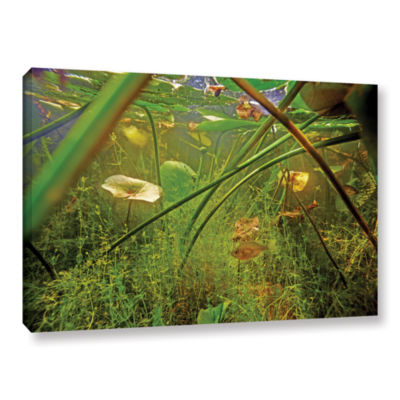 Brushstone Butler Lake #5 Gallery Wrapped Canvas Wall Art