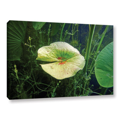 Brushstone Butler Lake #6 Gallery Wrapped Canvas Wall Art