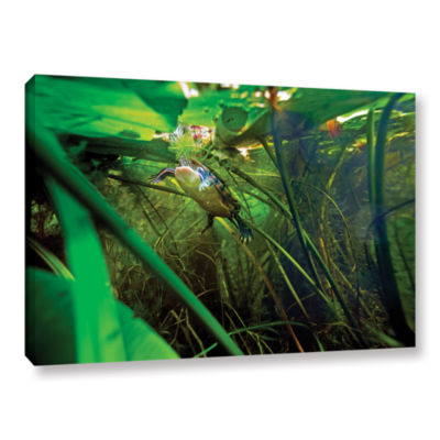 Brushstone Butler Lake #7 Gallery Wrapped Canvas Wall Art