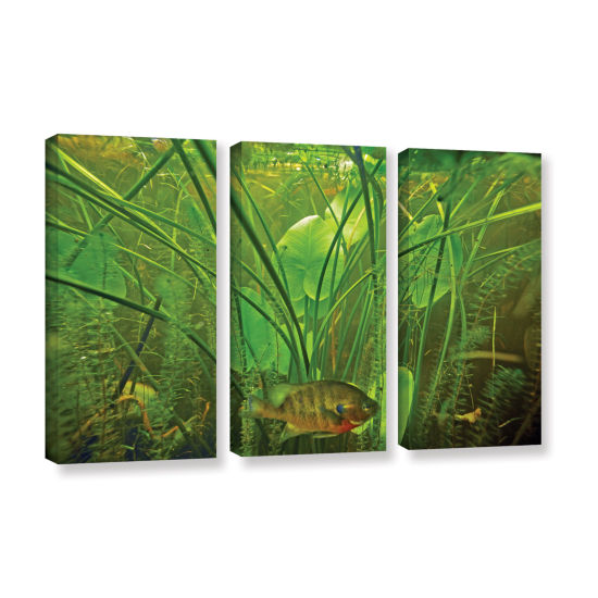 Brushstone Butler Lake #8 3-pc. Gallery Wrapped Canvas Wall Art