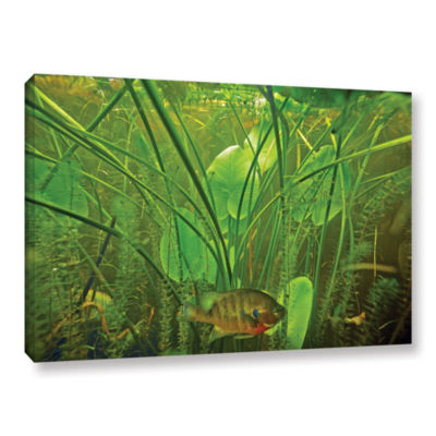 Brushstone Butler Lake #8 Gallery Wrapped Canvas Wall Art