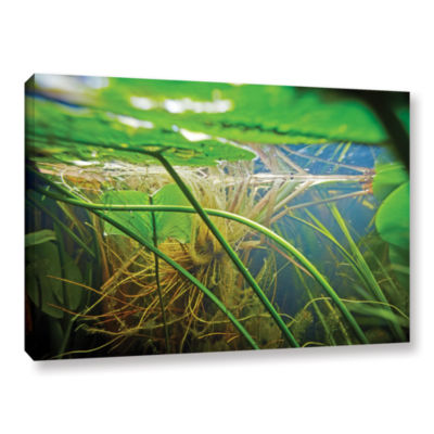 Brushstone Butler Lake #9 Gallery Wrapped Canvas Wall Art