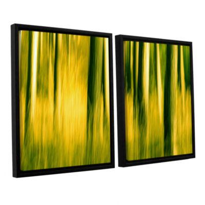 Brushstone Camera Shake 2 2-pc. Floater Framed Canvas Wall Art