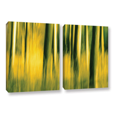 Brushstone Camera Shake 2 2-pc. Gallery Wrapped Canvas Wall Art