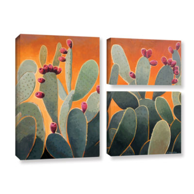 Brushstone Cactus Orange 3-pc. Flag Gallery Wrapped Canvas Wall Art