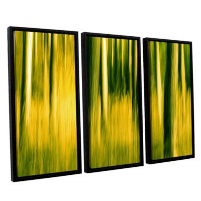 Brushstone Camera Shake 2 3-pc. Floater Framed Canvas Wall Art
