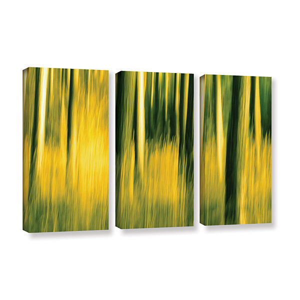 Brushstone Camera Shake 2 3-pc. Gallery Wrapped Canvas Wall Art ...