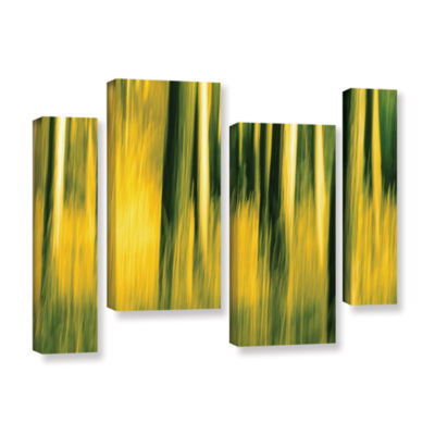 Brushstone Camera Shake 2 4-pc. Gallery Wrapped Staggered Canvas Wall Art