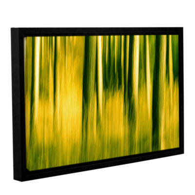 Brushstone Camera Shake 2 Gallery Wrapped Floater-Framed Canvas Wall Art