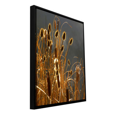 Brushstone Cat Tails And Storm Light Gallery Wrapped Floater-Framed Canvas Wall Art
