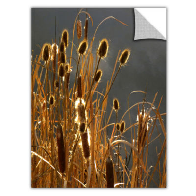 Brushstone Cat Tails And Storm Light Removable Wall Decal