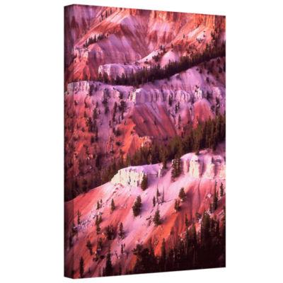 Brushstone Cedar Breaks Twilight Gallery Wrapped Canvas Wall Art