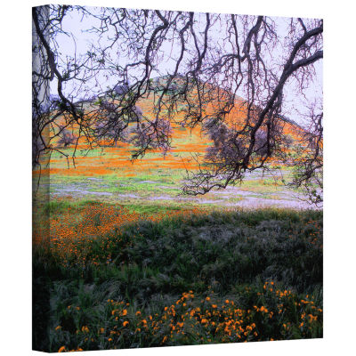 Brushstone Caliente Spring Gallery Wrapped CanvasWall Art