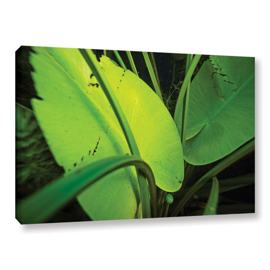 Brushstone Butler Lake #1 Gallery Wrapped Canvas Wall Art