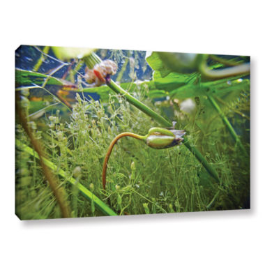 Brushstone Butler Lake #10 Gallery Wrapped CanvasWall Art