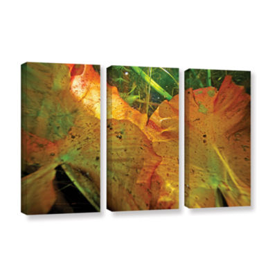 Brushstone Butler Lake #11 3-pc. Gallery Wrapped Canvas Wall Art