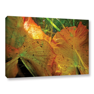 Brushstone Butler Lake #11 Gallery Wrapped CanvasWall Art