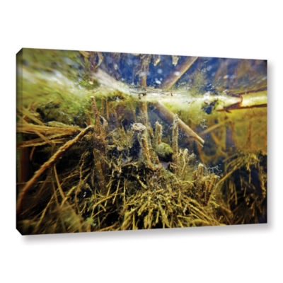 Brushstone Butler Lake #2 Gallery Wrapped Canvas Wall Art