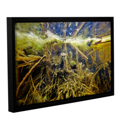 Brushstone Butler Lake #2 Gallery Wrapped Floater-Framed Canvas Wall Art