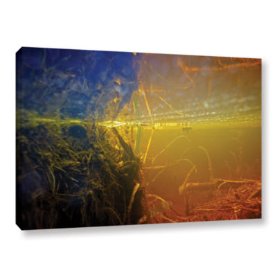 Brushstone Butler Lake #3 Gallery Wrapped Canvas Wall Art