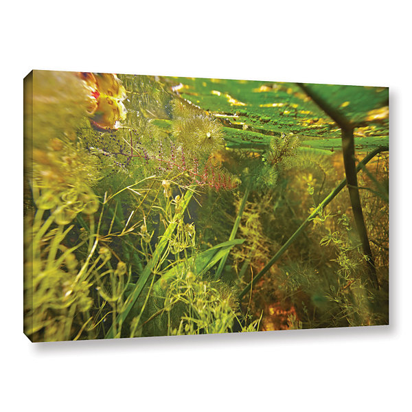 Brushstone Butler Lake #4 Gallery Wrapped Canvas Wall Art