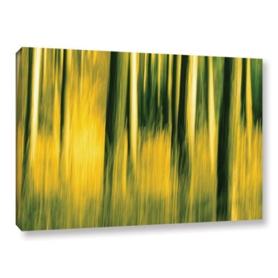 Brushstone Camera Shake 2 Gallery Wrapped Canvas Wall Art
