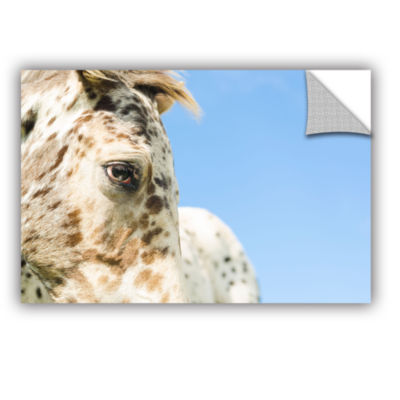 Brushstone Brown Spotted White Horse Removable Wall Decal