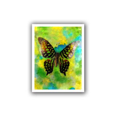 Brushstone Butterfly Canvas Wall Art