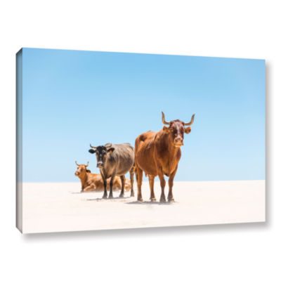 Brushstone Bulls In The Desert Gallery Wrapped Canvas Wall Art
