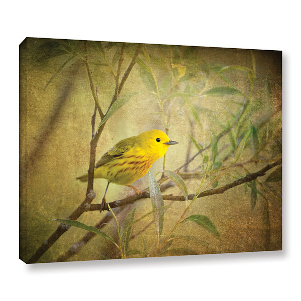 Brushstone Bird On Branch Gallery Wrapped Canvas Wall Art