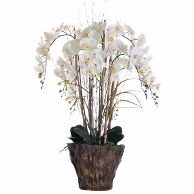 "Laura Ashley 38"" Tall Orchid Arrangement In Faux-Wood Fiberstone Pot"